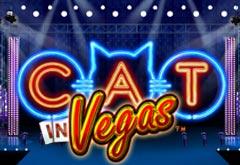 Cat in Vegas бесплатно, без регистрации от PlayTech