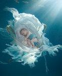 дети под водой, фотограф Zena HOLLOWAY