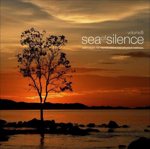 VA - Sea Of Silence Vol. 5 (2007)