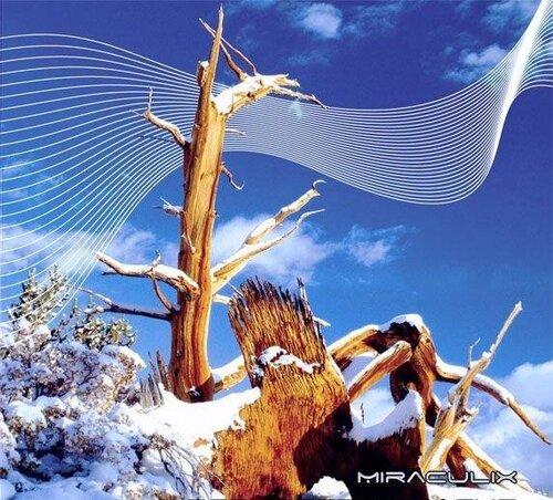 Miraculix - Forgotten Tracks (2009)
