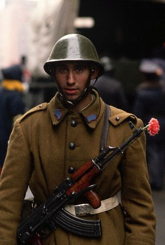 Romanian Soldier with Flower in Rifle