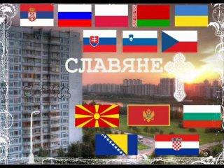 25 июня День дружбы и единения славян. Славяне. Флаги славянских стран