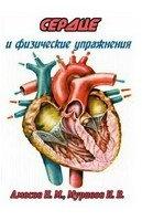 Сердце и физические упражнения