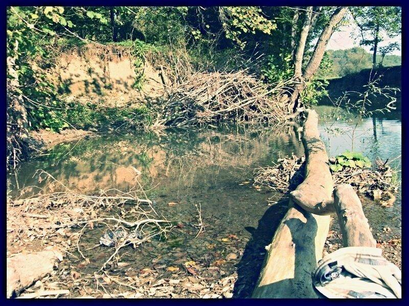 12 октября 2008, под Горячим Ключом, у реки (128).JPG