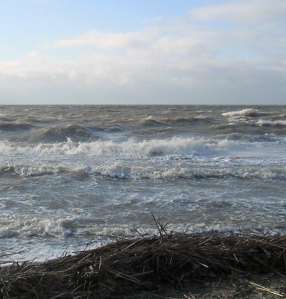 У берега ... SAM_5735 - 1