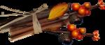 Carena_Autumn Crunch_26.PNG