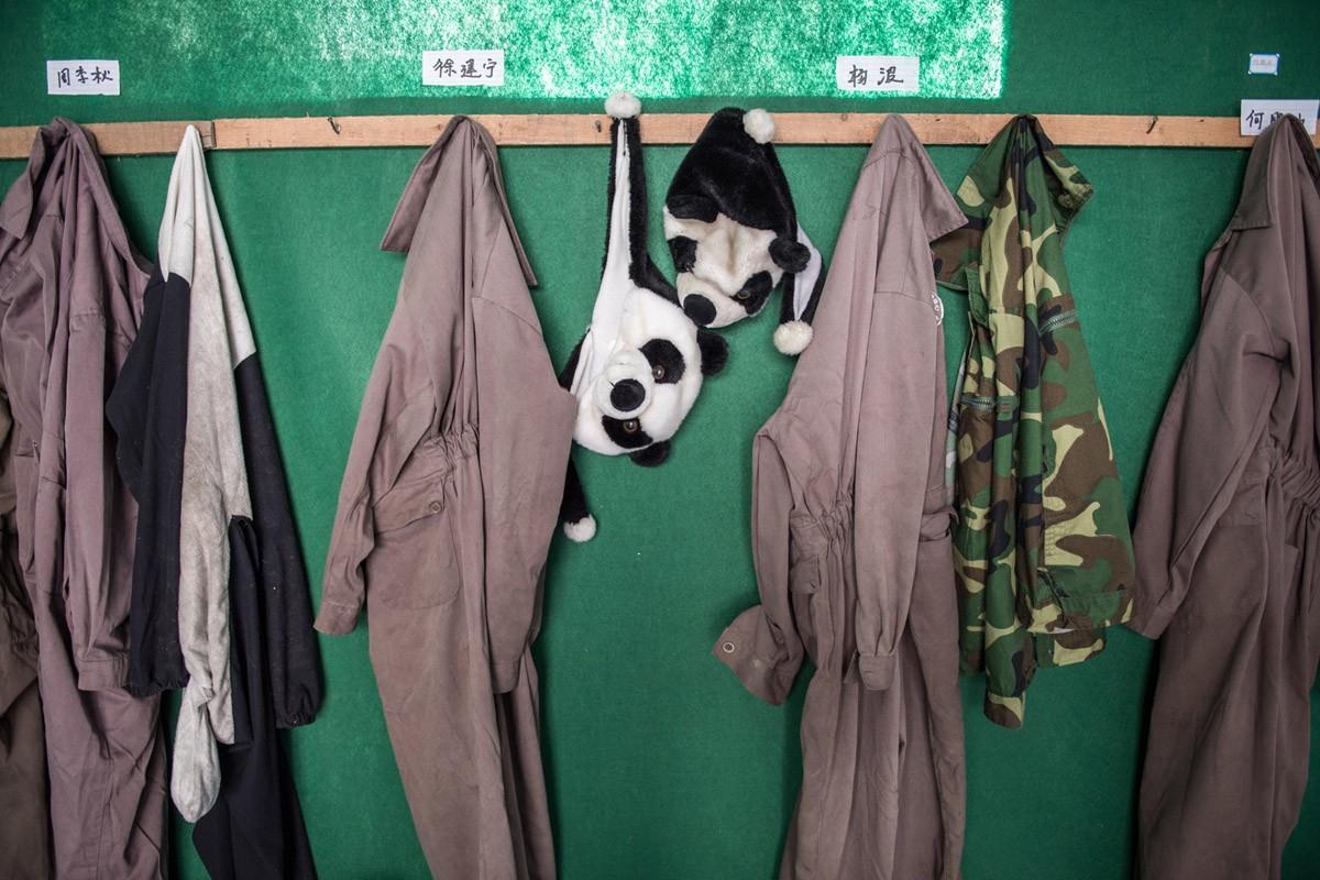 Костюмы панд висят в Национальном заповеднике Волонь. Все работники заповедника, взаимодействующие с