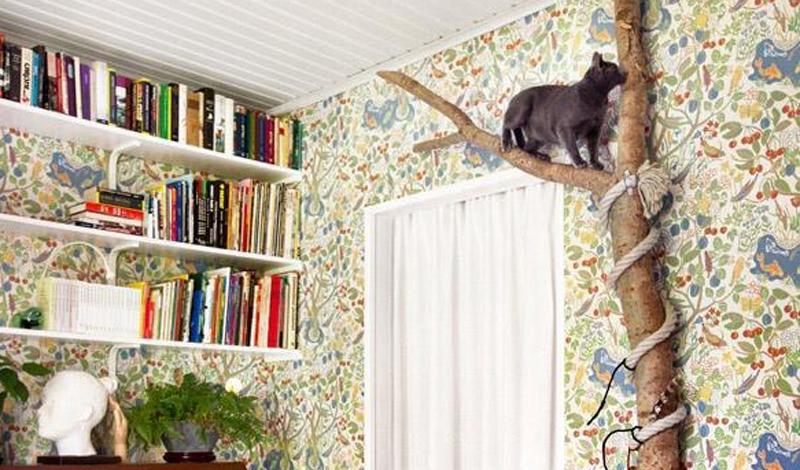 6. Дерево в гостиной Коты очень любят точить когти о любые поверхности и влезать повыше. Чтобы удовл