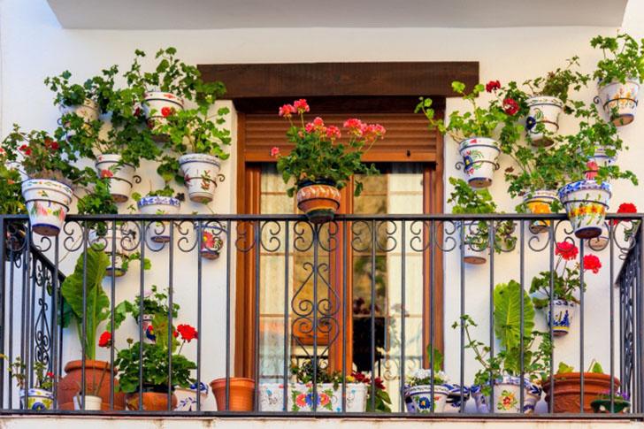 Сад в горшках Если у вас маленький балкон и нет желания тратить деньги на садовые клумбы, обычные цв