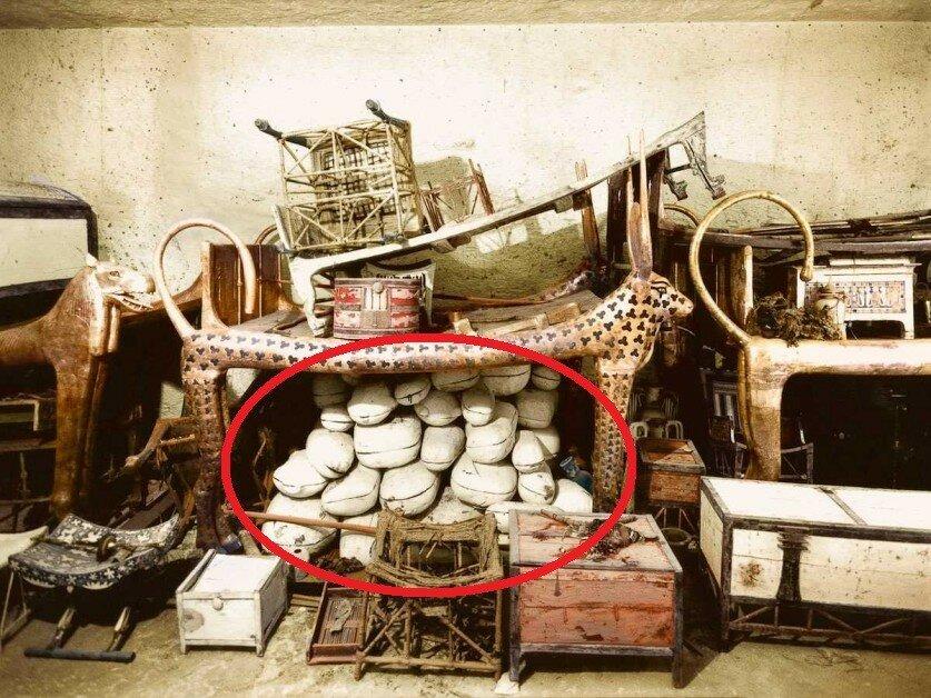 Купить тушенку (точнее ее прообраз), вероятно, можно было еще в Древнем Египте.