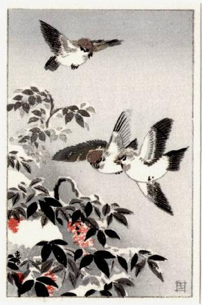 Tsuchiya_Koitsu-No_Series-Sparrows_Postcard-00031316-020605-F06.jpg
