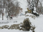 В Струковском Саду. Зима.