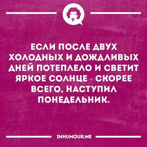 13726806_746564432113320_6048378528914052116_n.jpg