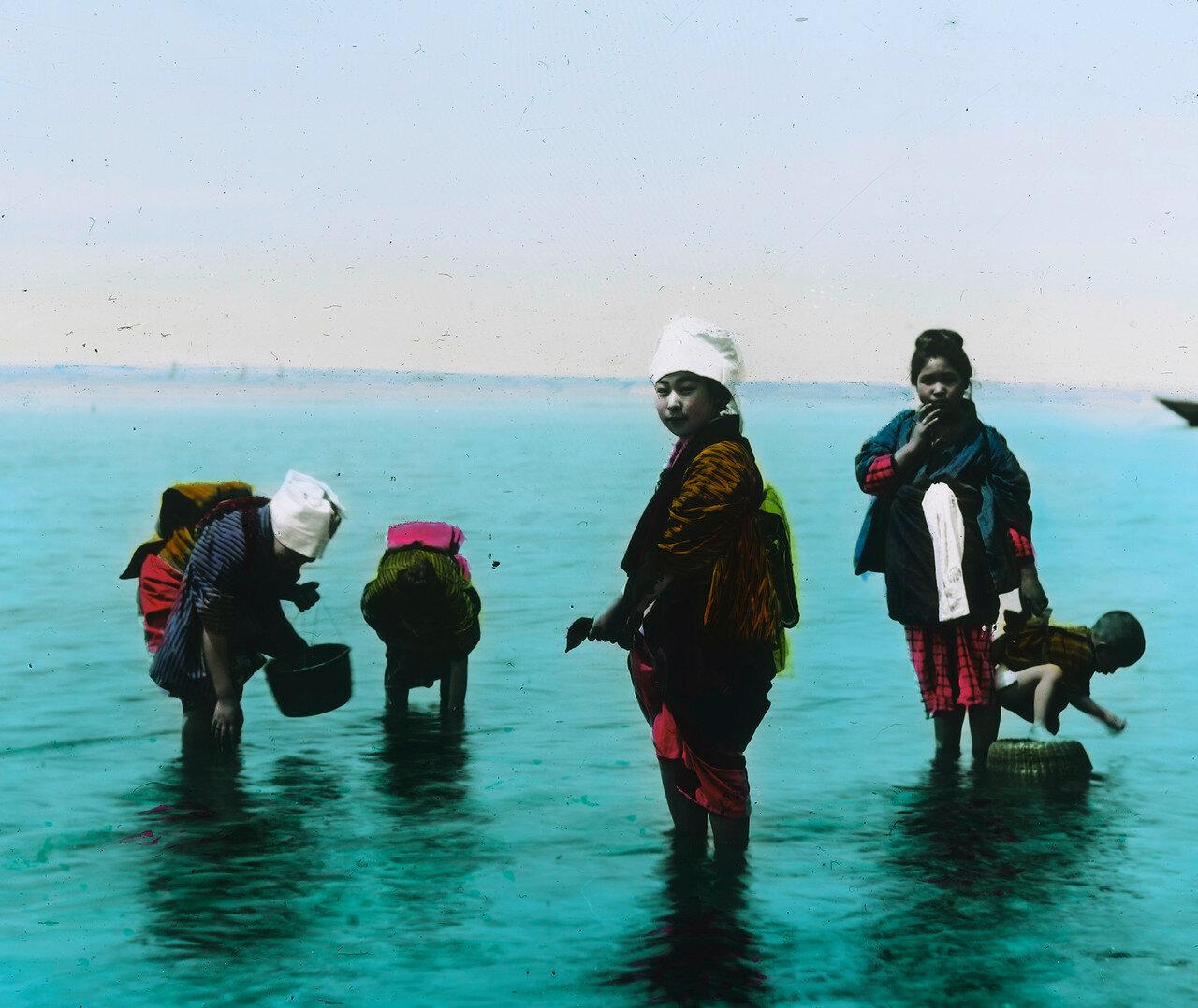 Во время сбора морских животных на мелководье