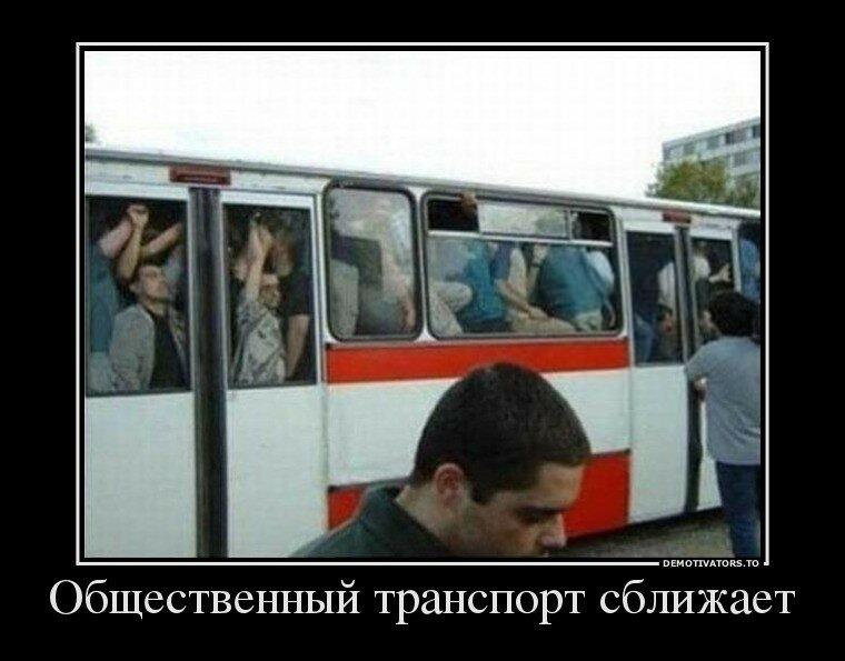 транспорт.jpg