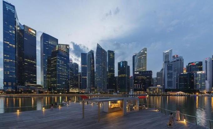 Фотографии. Дождевой лес и Сингапур
