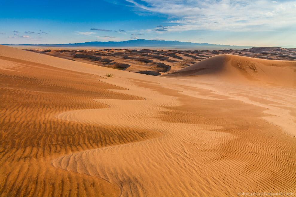 9. Ночью был дождь и песок местами еще мокрый. Сочетание мокрого и сухого создавало удивительны