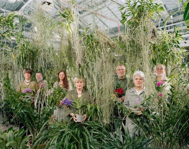 1. Клуб любителей орхидей