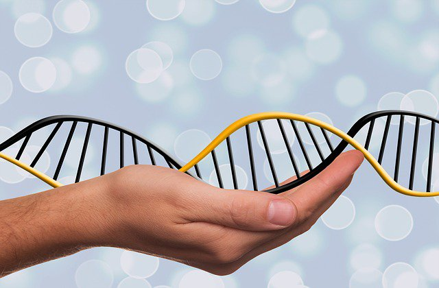 Японские генетики продвинулись в исследовании рака легки