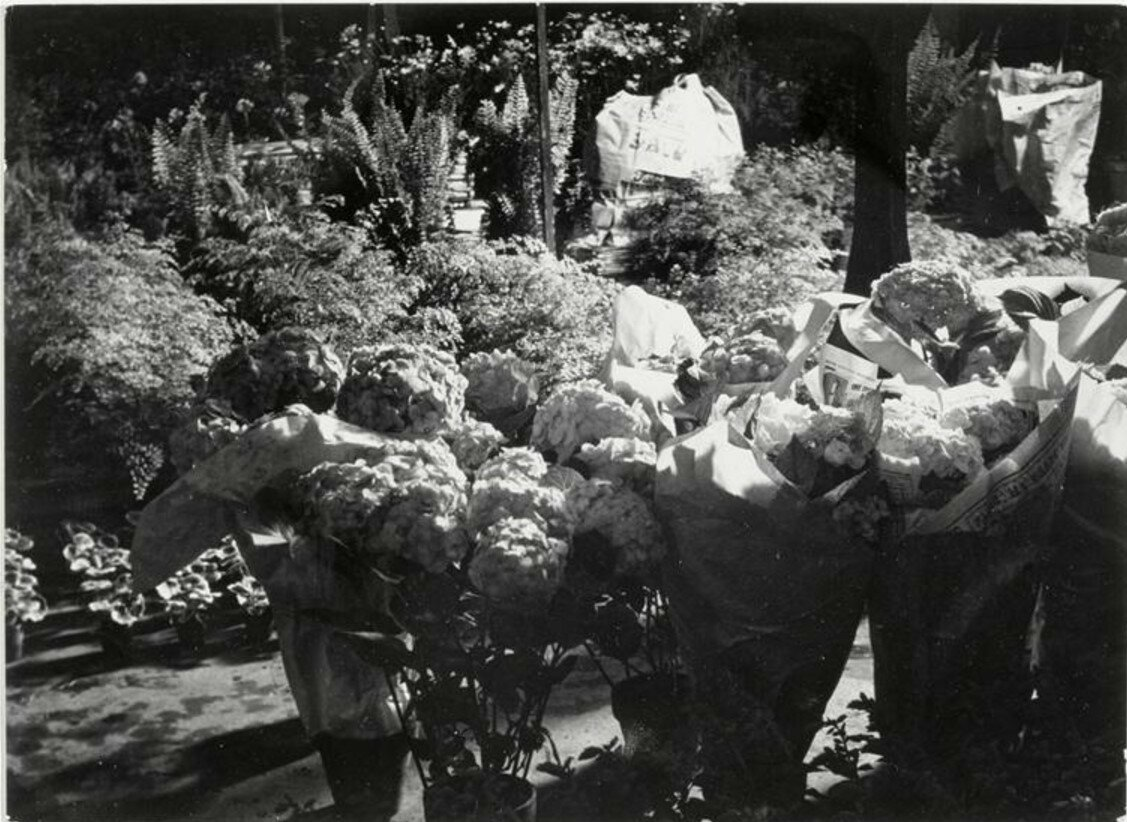 1930-е. «Пока еще не слишком поздно». Цветочный рынок в Ле-Аль