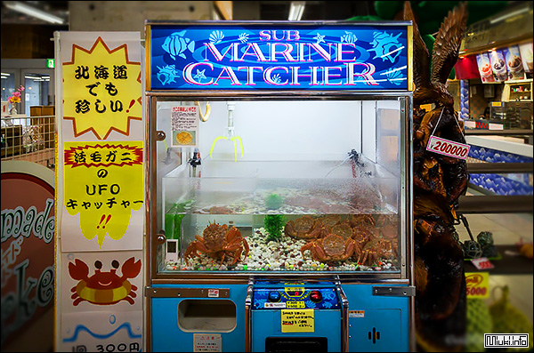 Японские кафе без трусиков фото 715-587