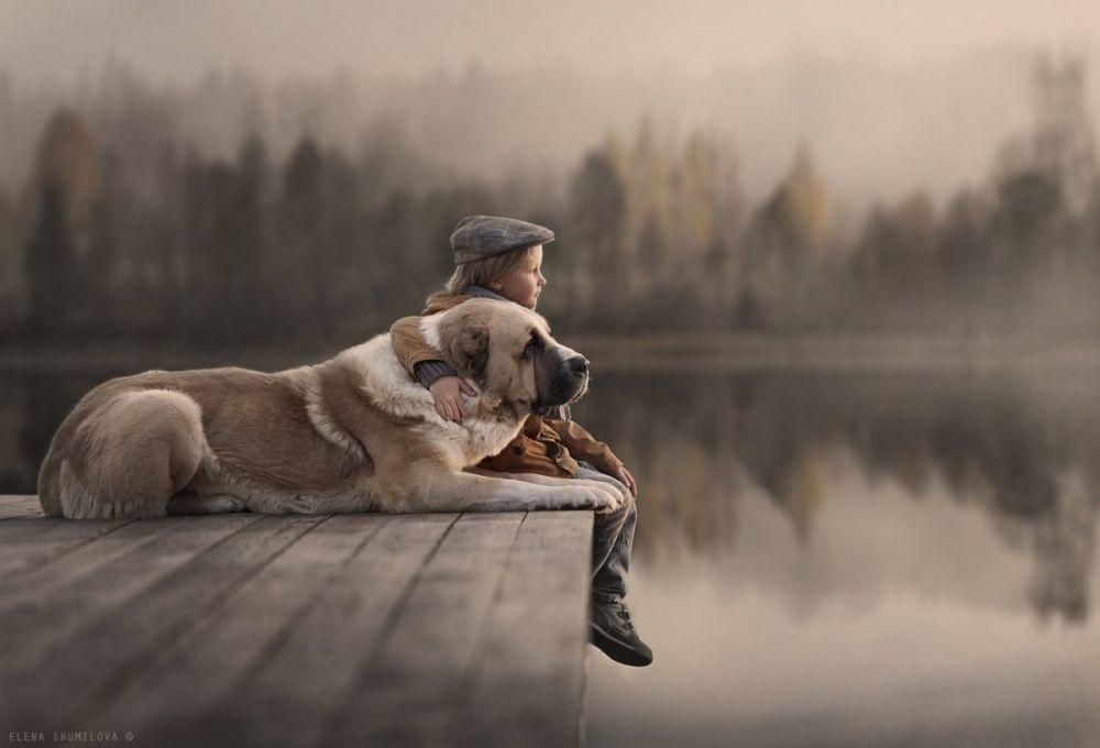 7. Они однажды нашли друг друга и с тех пор не расставались. (© Elena Shumilova)