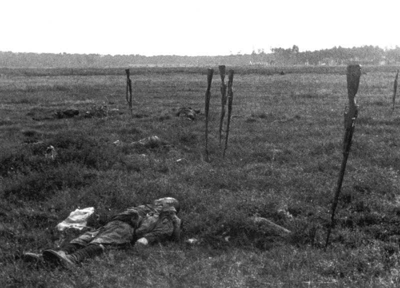 Красн., погибшие при контратаке нем. позиций у дер. Романищи. Гомельская обл. 41.jpg