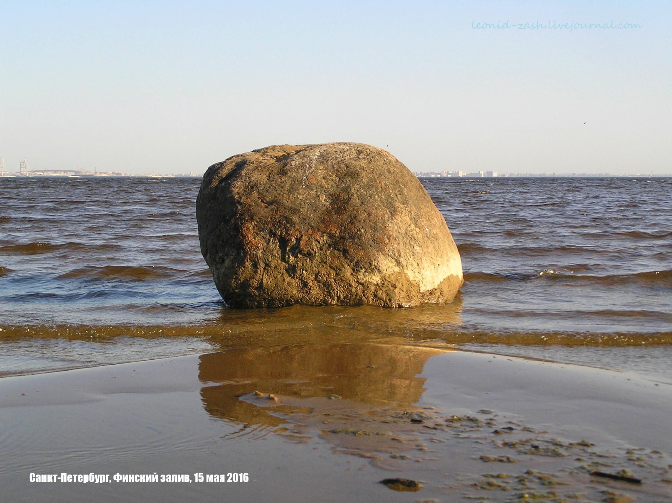 Финский залив 21.JPG