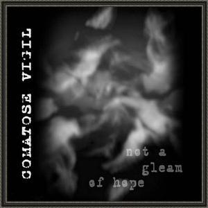 Comatose Vigil >  Not A Gleam Of Hope (2005)