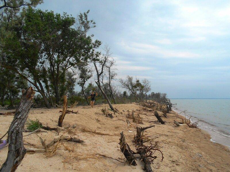 Бег, пески и лес Азовского побережья ... DSCN5899.JPG