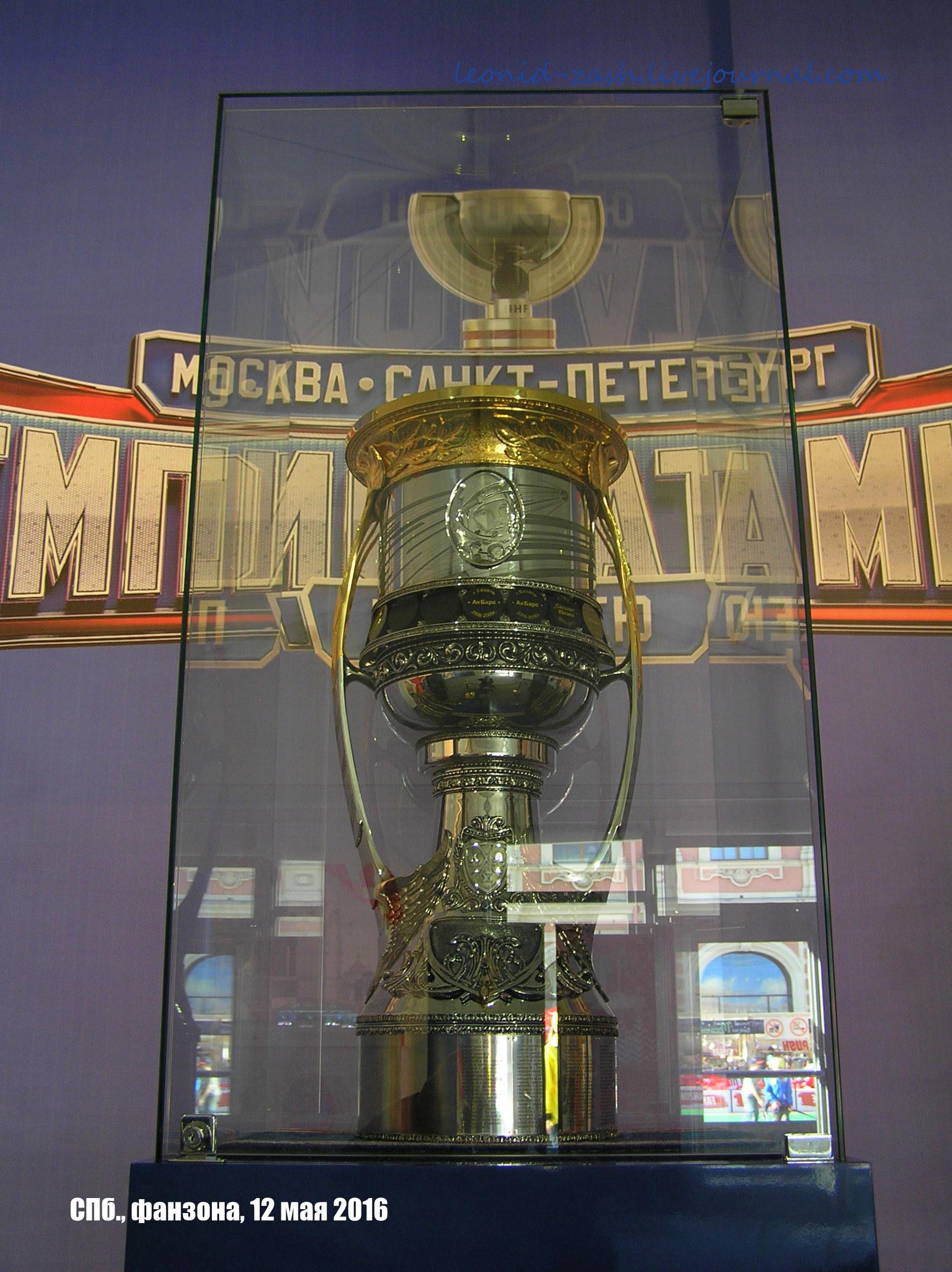 фанзона хоккей 62.JPG