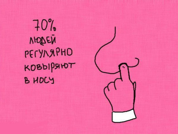 Статистика знает все