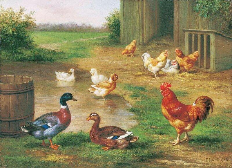 рассматривание картинки птичий двор мало кто может
