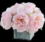 bouquet pivoines 1 Lizzy 01 2016.png