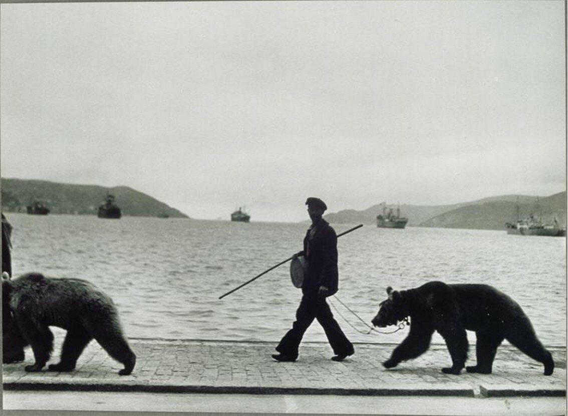 1953. На Босфоре