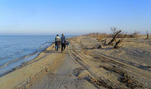 День на косе, с велосипедом. 2014-11-06