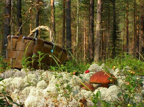 Александр Кузнецов — «***» на Яндекс.Фотках