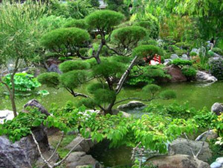 Синтоизм и Япония