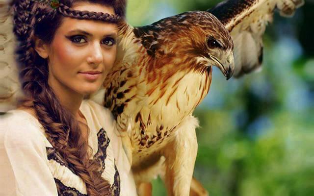turul-madár.jpg