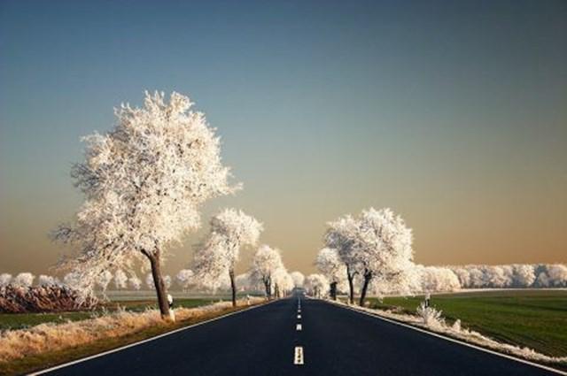 100 самых красивых зимних фотографии: пейзажи, звери и вообще 0 10f576 8d985ca1 orig