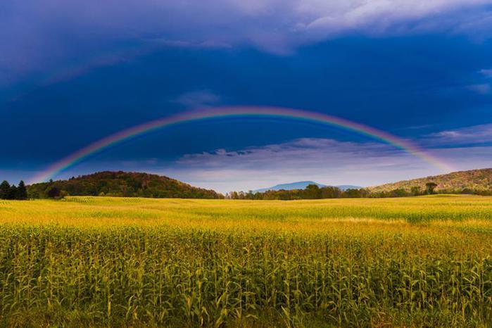 В Вермонте запретили рекламу из за красивых пейзажей штата 0 cb94d e38d572 orig