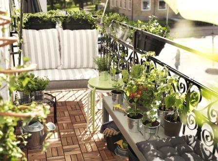 orangereia-na-balkone-13.jpg