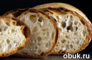 Книга Сергей Кириллов - Домашний хлеб (обучающее видео)