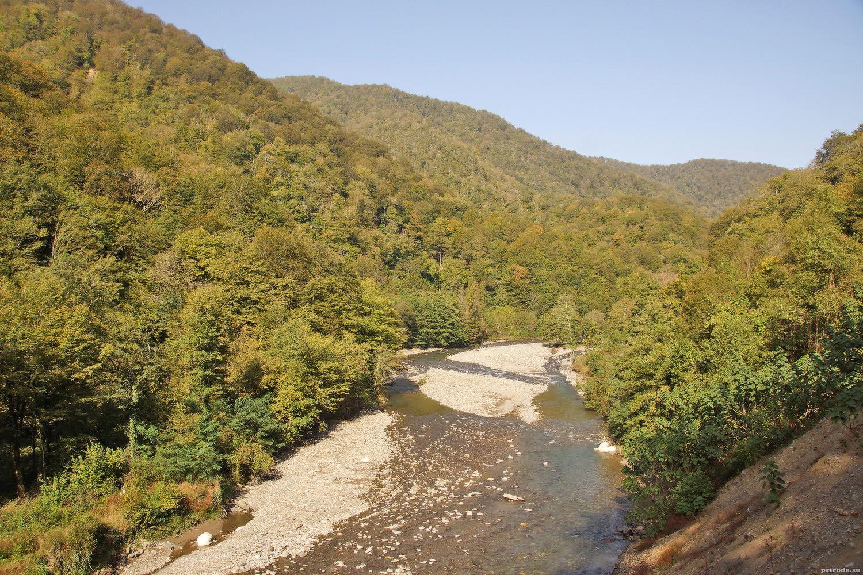 Берега Гумисты в окружении буковых и самшитовых лесов.