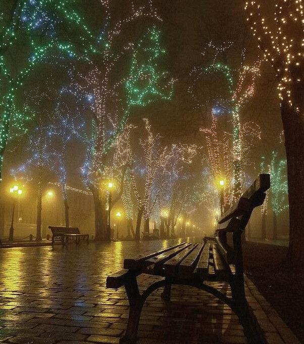 Огни на улицах города