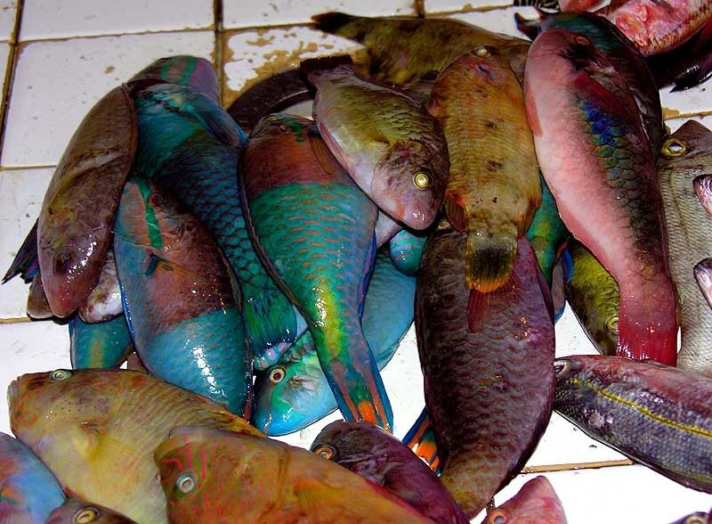 Рыбный рынок Себу