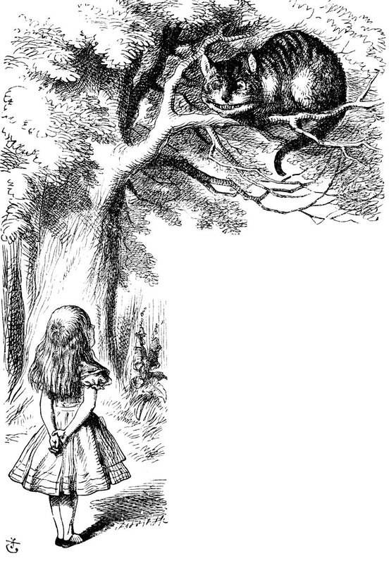 characterization of alice in lewis carrolls alice in wonderland Alice's adventures in wonderland (commonly shortened to alice in wonderland) is an 1865 novel written by english author charles lutwidge dodgson under the pseudonym lewis.