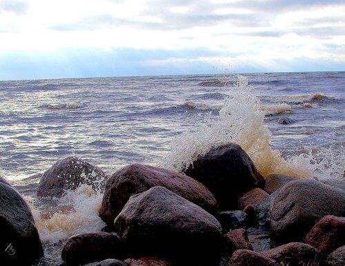 Финский залив осени 2009