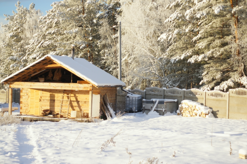 Зима в саду - Страница 5 0_1273f8_65d098d4_orig
