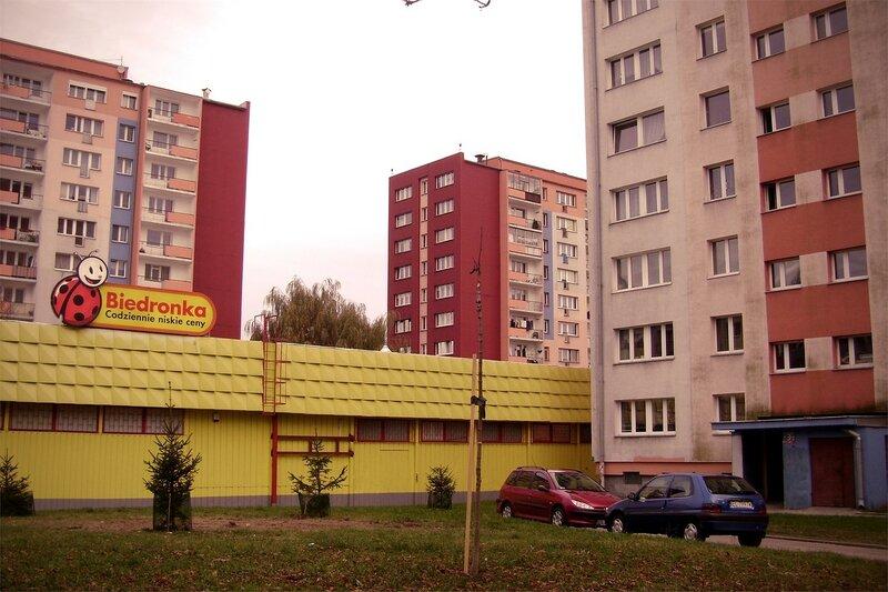 GFRANQ_KIRILL_MOISEEV_20134799_CANVAS.jpg